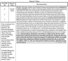 nursing physical assessment documentation