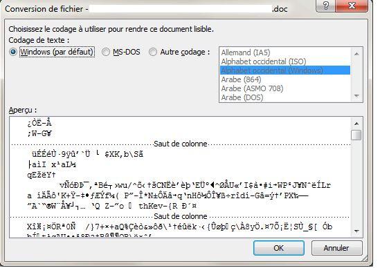 mettre un document pdf en word gratuit