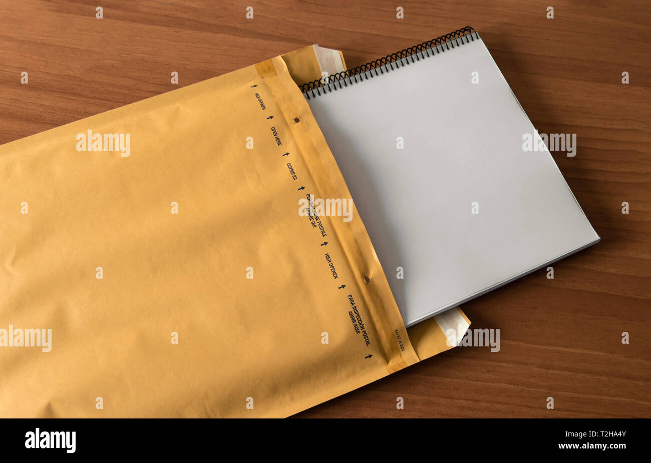 postman local copy of documentation