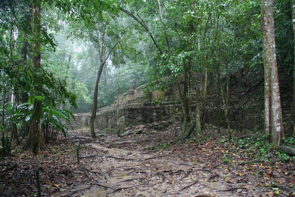 stumbling on ancient document aonuma