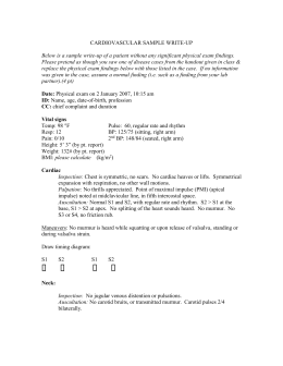 lung physical exam documentation